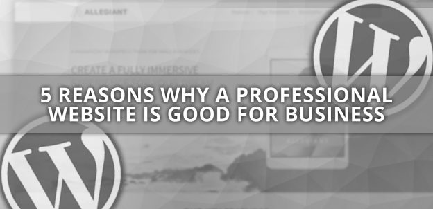 5 REASONS WHY A PROFESSIONAL WEBSITE IS GOOD FOR BUSINESS | Limitless Digital - web design Doncaster